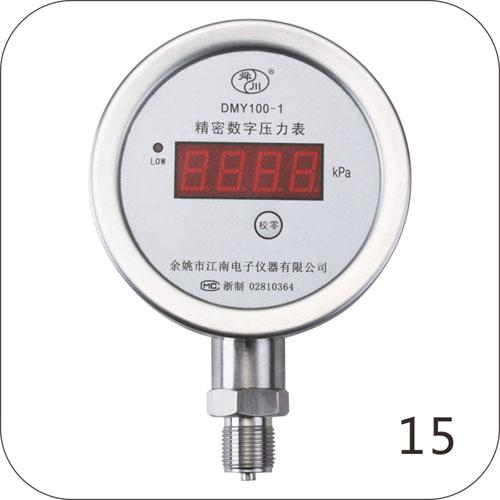 DMY100-1精密数字压力表